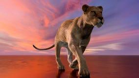 Het beeld van een leeuwin Stock Foto