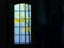 Het beeld van een venster op een zwarte achtergrond die de de herfstboom overzien vertakt zich Royalty-vrije Stock Foto