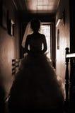 Het beeld van het silhouet van de bruid Royalty-vrije Stock Foto