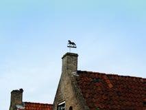 Het beeld van Vane Vertical van het paardweer bovenop Huis Stock Foto's