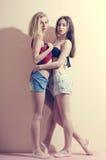 Het beeld van 2 vormt sexy romantische mooie meisjes Stock Afbeelding