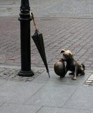 Het beeldhouwwerk van de hond in Torun Stock Fotografie