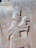 Het beeldhouwwerk van de hulp, Persepolis Royalty-vrije Stock Foto