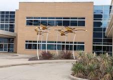 Het beeldhouwwerk van de monarchvlinder door David Hickman buiten Ambulant de Chirurgiecentrum van Parkland Simmons, Dallas, Texa stock foto