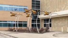 Het beeldhouwwerk van de monarchvlinder door David Hickman buiten Ambulant de Chirurgiecentrum van Parkland Simmons, Dallas, Texa royalty-vrije stock fotografie