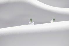 Het Beeldhouwwerk van de Sneeuw van de aard Royalty-vrije Stock Afbeelding