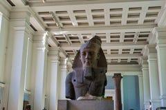 Het Beeldhouwwerk van Egyption van het Britshmuseum stock fotografie