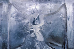 Het beeldhouwwerk van het ijs in ijsstaaf Royalty-vrije Stock Foto