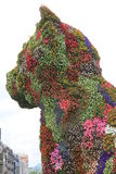 Het beeldhouwwerk van het puppy, Bilbao (Baskisch Land) Royalty-vrije Stock Afbeeldingen