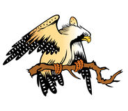 Het beeldverhaal van de adelaar Stock Fotografie
