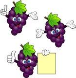 Het beeldverhaal van de druif vector illustratie