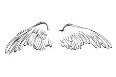 Het beeldverhaal vectorillustratie van de vleugelsschets stock illustratie