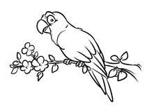 Het beeldverhaalillustratie van papegaai kleurende pagina's stock illustratie