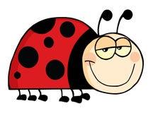 Het beeldverhaalkarakter van het lieveheersbeestje Stock Afbeeldingen