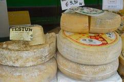 Het begin van de truffelmarkt in Alba (Cuneo) is, gehouden meer dan 50 jaar, het ezelsras Stock Afbeeldingen