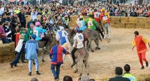 Het begin van de truffelmarkt in Alba (Cuneo) is, gehouden meer dan 50 jaar, het ezelsras Stock Fotografie