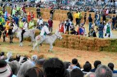 Het begin van de truffelmarkt in Alba (Cuneo) is, gehouden meer dan 50 jaar, het ezelsras Royalty-vrije Stock Foto's