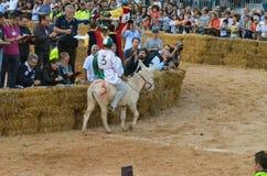 Het begin van de truffelmarkt in Alba (Cuneo) is, gehouden meer dan 50 jaar, het ezelsras Royalty-vrije Stock Afbeeldingen