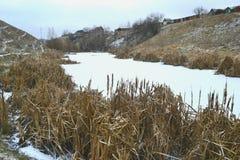 Het begin van de winterlandschap Stock Afbeelding