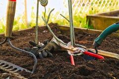 Het begin van het tuinseizoen met hulpmiddelen klaar te gaan Stock Afbeelding