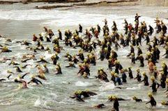 Het begin van Triathlon stock fotografie