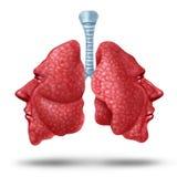 Het begrip van Lung Health stock illustratie