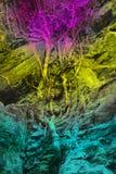 Het behang, achtergrond, een boom groeit langs een regenboog-gekleurde rots, stock foto