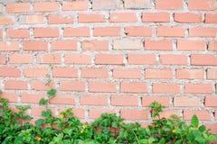 Het behang van de blokmuur Stock Foto's