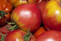 Het behang van de tomaat royalty-vrije stock foto