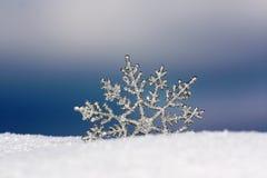 Het behang van de winter Stock Foto's