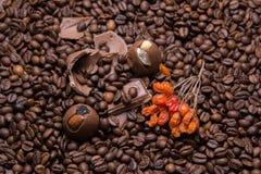 Het behang van koffiebonen met chocolade en viburnum berrie beeld Stock Foto's