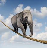 Het beheren van Risico stock illustratie
