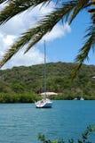 Het bekijken de Baai van Nelson stock foto