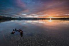 Het bekijken op Loch Lomond in Dawn Royalty-vrije Stock Foto