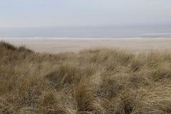 Het bekijken over het duin-gras over de Noordzee ilse van VLieland stock foto