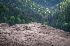 Het bekijken punt in Slowaaks Paradijs stock foto