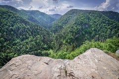 Het bekijken punt in Slowaaks Paradijs stock fotografie