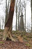 Het bekijken van toren op Grote Blanik achter boomstam van dode boom stock fotografie