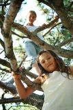 Het beklimmen in boom stock foto's