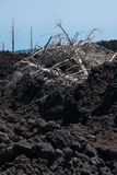 Het beklimmen tot de bovenkant van de vulkaan van Etna Stock Afbeelding