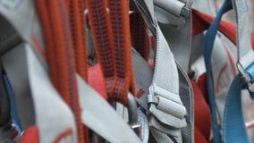 Het beklimmen van veiligheidsgordelgesp voorraad De veiligheidsgordels van de rotsklimmer sluiten omhoog stock foto's