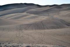 Het beklimmen van Zandduinen Stock Foto's