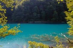 Het belangrijkste natuurlijke oriëntatiepunt van Kroatië is de Plitvice-Meren met cascades van watervallen Smaragdgroen duidelijk royalty-vrije stock afbeeldingen