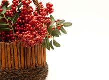 Het Belangrijkste voorwerp van Hollyberry Royalty-vrije Stock Foto