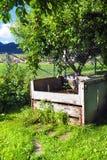 Het bemesten in de tuin onder de boom Stock Foto's