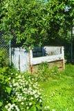 Het bemesten in de tuin onder de boom Royalty-vrije Stock Foto's