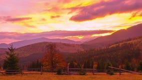 Het Bergbos op de Achtergrond van de Zonsondergang stock video