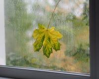 Het bericht van de herfst Stock Foto's
