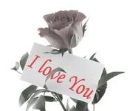 Het bericht van de liefde #2 stock fotografie