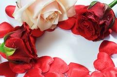 Het bericht van de liefde, rozen en hartenconfettien Royalty-vrije Stock Foto's